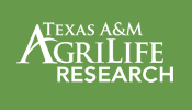 Texas A and M AgriLife Research Logo